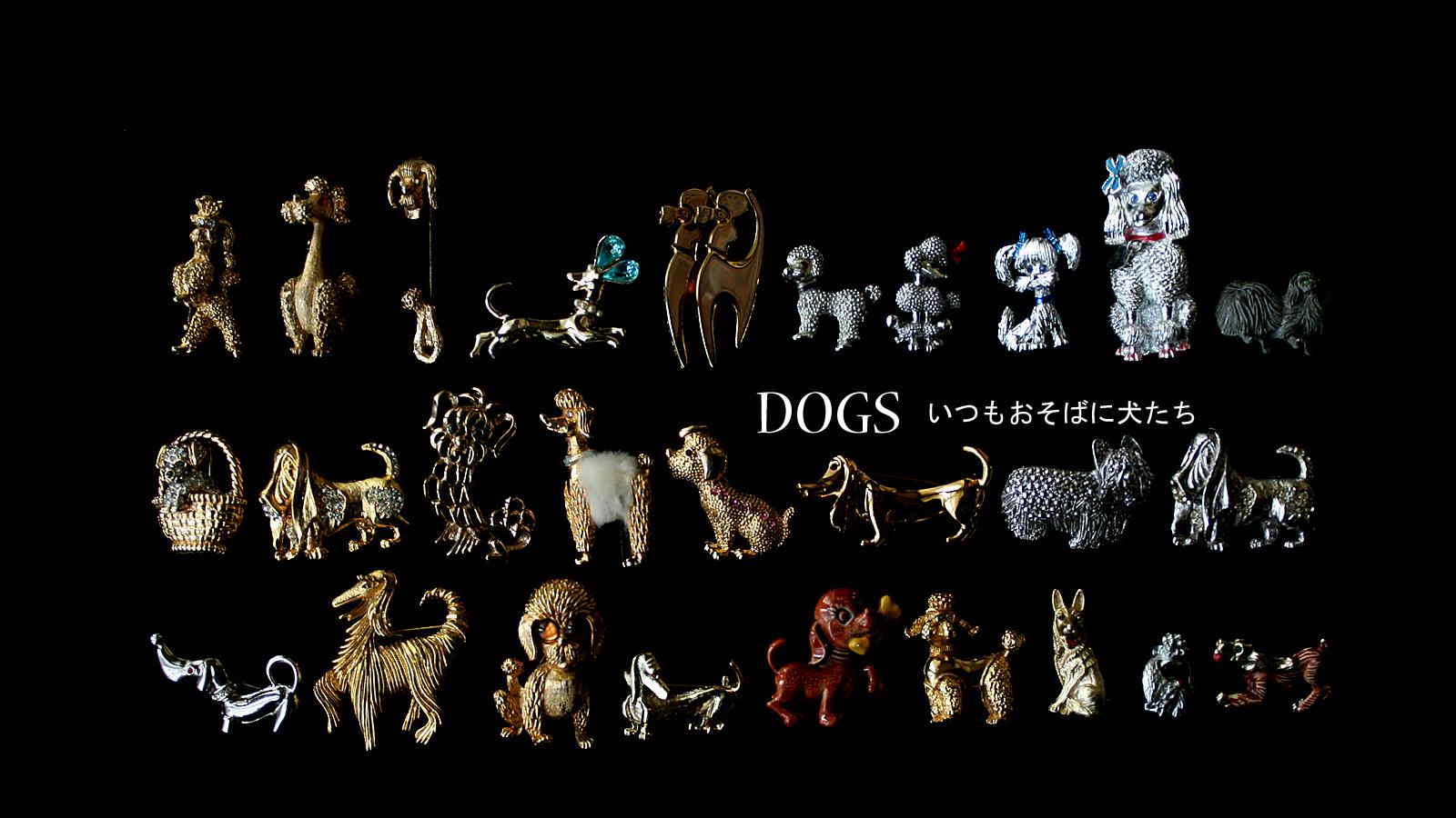 犬 動物 イヌ
