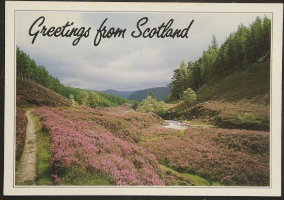画像1: イギリス アンティークポストカード Scotland スコットランド (1)